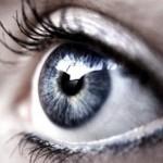Profilbild von BaluForKanzler