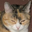 Profilbild von Tinka85
