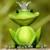 Profilbild von Froschkönigin